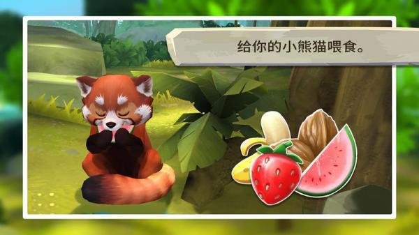 我的小熊猫游戏截图(4)