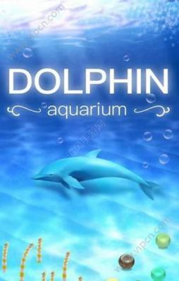 海豚饲养师安卓版游戏截图(3)