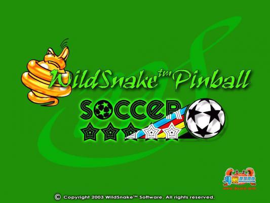 野蛇足球弹珠(WildSnake Pinball Soccer)游戏截图(1)