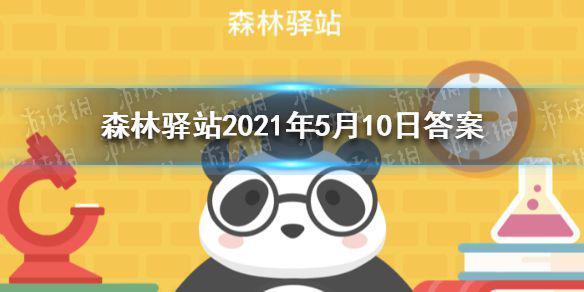 国家一级保护植物,花朵像白鸽,被称为植物中的绿色大熊猫的是什么树 森林驿站2021年5月10日答案